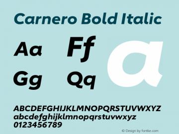 Carnero Bold Italic Version 1.10图片样张