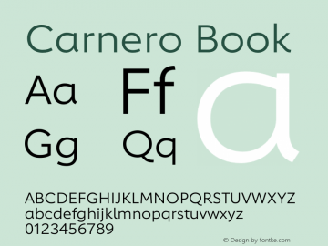 Carnero Book Version 1.10图片样张