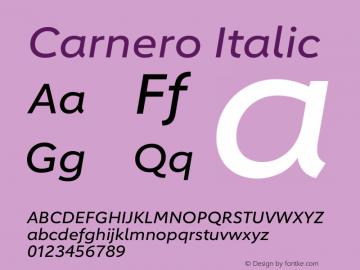Carnero Italic Version 1.10图片样张