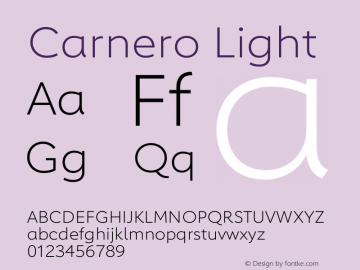Carnero Light Version 1.10图片样张