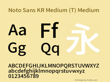 Noto Sans KR Medium (T) Medium Version 1.004 April 4, 2019图片样张