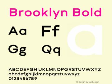 Brooklyn Bold Version 1.000;PS 001.000;hotconv 1.0.88;makeotf.lib2.5.64775图片样张