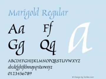 Marigold Version 1.0图片样张