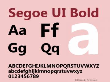 Segoe UI Bold Version 5.00图片样张