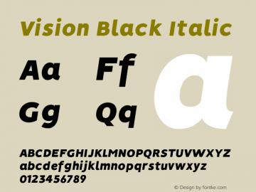 Vision Black Italic Version 1.000;PS 001.000;hotconv 1.0.88;makeotf.lib2.5.64775图片样张