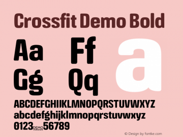 Crossfit Demo Bold Version 1.000;PS 001.000;hotconv 1.0.88;makeotf.lib2.5.64775图片样张