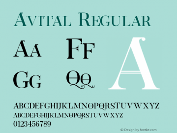 Avital test 1 Version 1.000图片样张