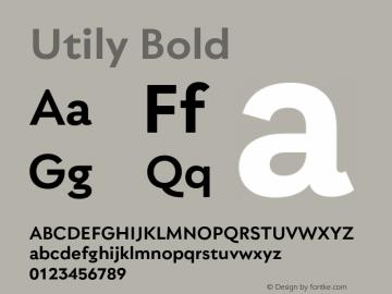Utily Bold Version 0.000;hotconv 1.0.109;makeotfexe 2.5.65596图片样张
