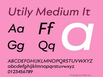 Utily Medium It Version 0.000;hotconv 1.0.109;makeotfexe 2.5.65596图片样张