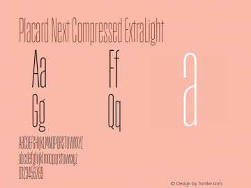 Placard Next Comp ExtraLight Version 1.10, build 16, s3图片样张