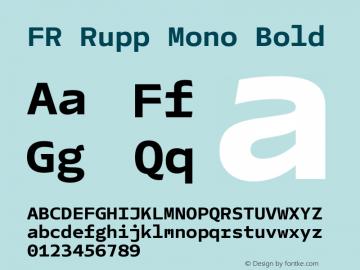 FR Rupp Mono Bold Version 1.000图片样张