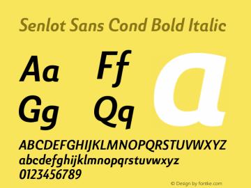SenlotSansCond-BoldItalic Version 1.000图片样张