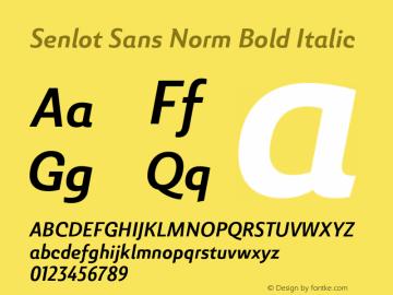 SenlotSansNorm-BoldItalic Version 1.000图片样张