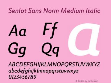 SenlotSansNorm-MediumItalic Version 1.000图片样张