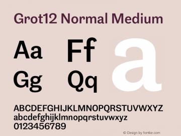 Grot12Normal-Medium Version 1.0图片样张