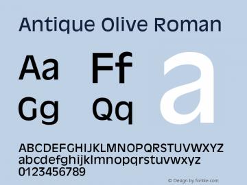 Antique Olive Font,Antique Olive Roman Font,AntiqueOlive
