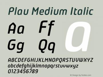 Plau-MediumItalic Version 2.001;PS 002.001;hotconv 1.0.70;makeotf.lib2.5.58329;com.myfonts.niramekko.plau-italics.medium.wfkit2.46eA图片样张