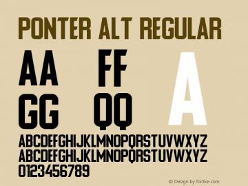 Ponter Alt Version 1.00 July 6, 2019, initial release图片样张