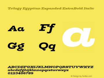 TrilogyEgyptianExpanded-XBoldIt Version 1.001图片样张