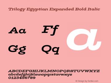 TrilogyEgyptianExpanded-BoldIt Version 1.001图片样张