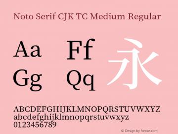 Noto Serif CJK TC Medium Version 1.001;PS 1.001;hotconv 16.6.54;makeotf.lib2.5.65590图片样张