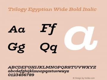 TrilogyEgyptianWide-BoldItalic Version 1.001图片样张
