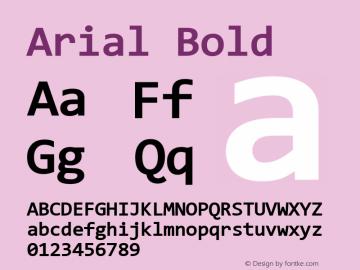 Arial Bold Version 9.0 ; ttfautohint (v1.8.3) -l 2 -r 96 -G 96 -x 96 -H 203 -D latn -f none -m