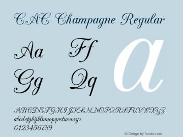 CAC Champagne v1.2 8/28/96图片样张