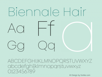 Biennale Hair Version 1.001;hotconv 1.0.109;makeotfexe 2.5.65596图片样张