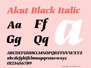 Akut Black Italic Version 1.000;PS 001.000;hotconv 1.0.88;makeotf.lib2.5.64775图片样张