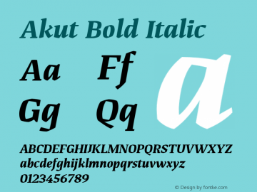 Akut Bold Italic Version 1.000;PS 001.000;hotconv 1.0.88;makeotf.lib2.5.64775图片样张