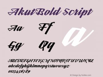 Akut Bold Script Version 1.000;PS 001.000;hotconv 1.0.88;makeotf.lib2.5.64775图片样张