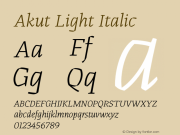 Akut Light Italic Version 1.000;PS 001.000;hotconv 1.0.88;makeotf.lib2.5.64775图片样张