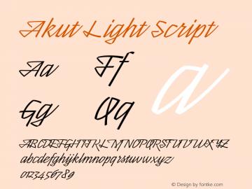Akut Light Script Version 1.000;PS 001.000;hotconv 1.0.88;makeotf.lib2.5.64775图片样张