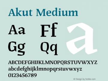 Akut Medium Version 1.000;PS 001.000;hotconv 1.0.88;makeotf.lib2.5.64775图片样张