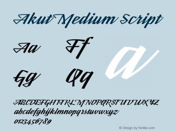 Akut Medium Script Version 1.000;PS 001.000;hotconv 1.0.88;makeotf.lib2.5.64775图片样张