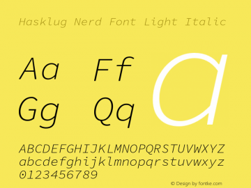 Hasklug Light Italic Nerd Font Complete Version 1.050;PS 1.0;hotconv 16.6.51;makeotf.lib2.5.65220 Font Sample