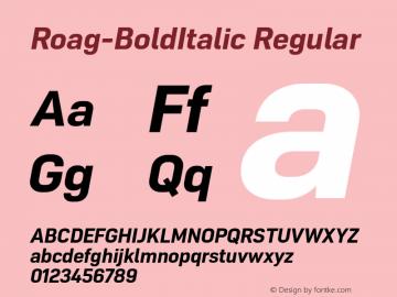 Roag W05 Bold Italic Version 1.00图片样张