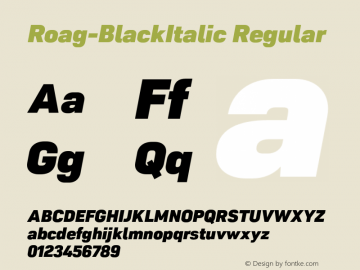 Roag W05 Black Italic Version 1.00图片样张