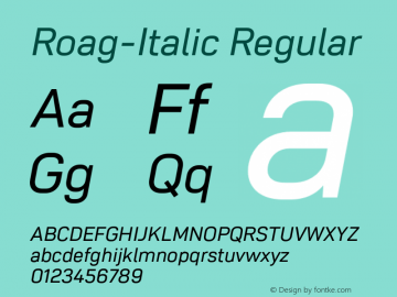 Roag W05 Italic Version 1.00图片样张