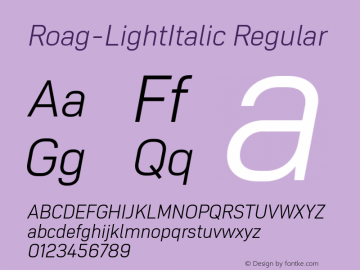 Roag W05 Light Italic Version 1.00图片样张