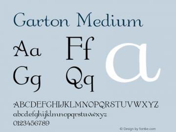 Garton Medium 001.000图片样张