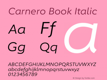 Carnero-BookItalic Version 1.10, build 11, s3图片样张