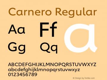 Carnero-Regular Version 1.10, build 11, s3图片样张