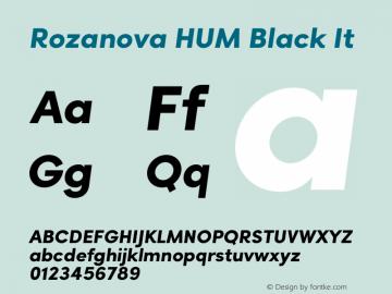 Rozanova HUM Black It Version 1.019;hotconv 1.0.109;makeotfexe 2.5.65596图片样张