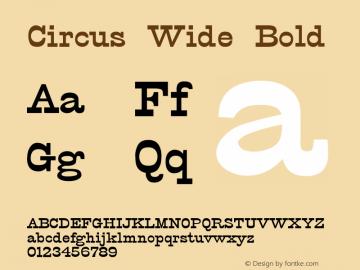 Circus Wide Bold Version 1.000;PS 001.001;hotconv 1.0.38 {DfLp-URBC-66E7-7FBL-FXFA}图片样张