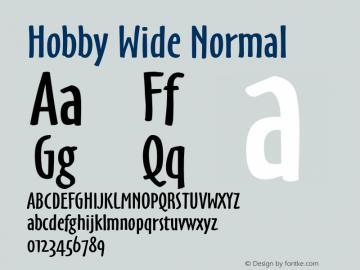 HobbyWideNormal 1.0 Wed Jul 28 16:35:26 1993 {DfLp-URBC-66E7-7FBL-FXFA}图片样张