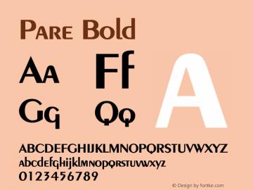 PareBold Altsys Fontographer 4.1 1/9/95 {DfLp-URBC-66E7-7FBL-FXFA}图片样张
