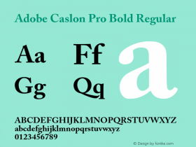 Adobe Caslon Pro Bold Regular Version 2.059;PS 2.000;hotconv 1.0.57;makeotf.lib2.0.21895 Font Sample