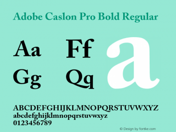 Adobe Caslon Pro Bold Regular Version 2.059;PS 2.000;hotconv 1.0.57;makeotf.lib2.0.21895 Font Sample